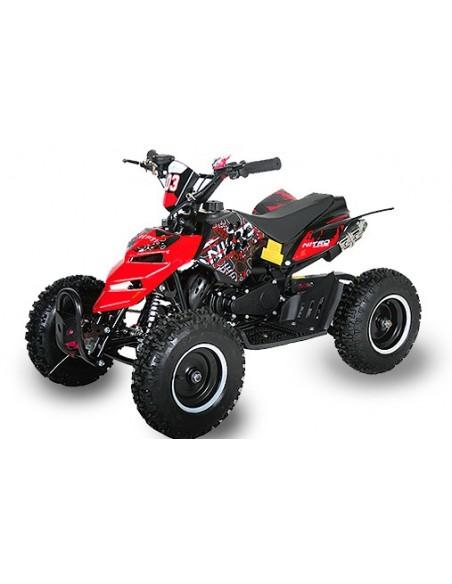 Repti Deluxe 49cc R6 E-Start