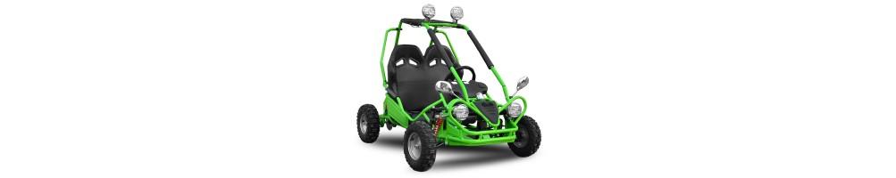 Buggy eléctricos